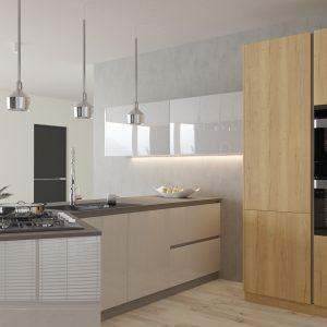Kuchyňa Lak Lesk svetlosivá